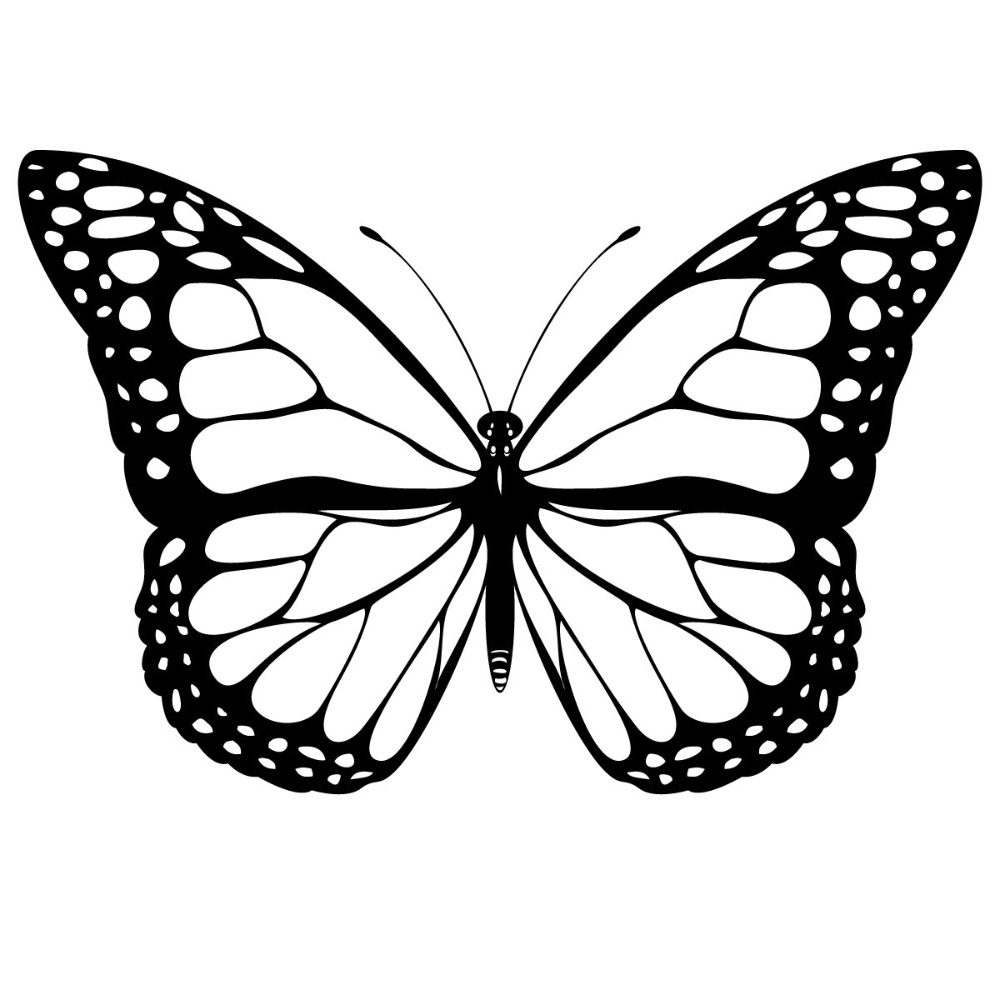 Mariposas dibujos