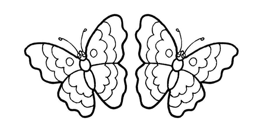 Dibujos de mariposas para colorear im genes y fotos for Dibujos de murales para pared