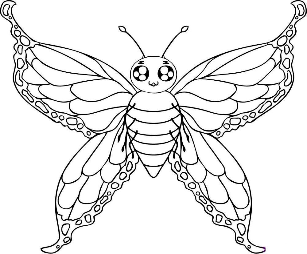 Dibujos de mariposas para pintar :: Imágenes y fotos