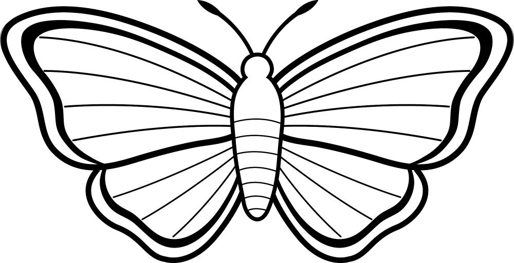 Dibujos para colorear de mariposas  Imgenes y fotos