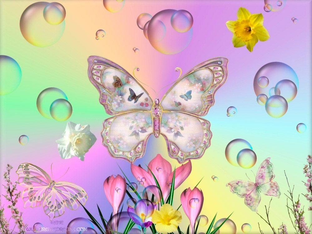 Im genes de mariposas bonitas im genes y fotos for Spring craft shows near me