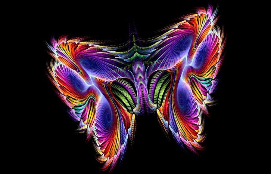 Galería de imágenes: Fondos de mariposas para Smartphones